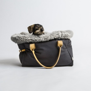 Cloud 7 Dog Carrier Canvas_Dachshound 1
