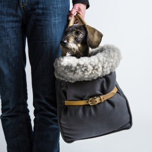 Cloud 7 Dog Carrier Canvas_Insitu 2