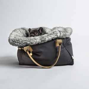 Cloud 7 Dog Carrier Canvas_Pug 2