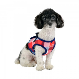 quinn harness B navy on dog
